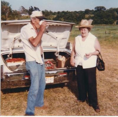 Jaworski Farms 1970s Produce Packed in Customers Car Trunk Farmer Direct